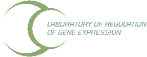 logo_Laboratory of Regulation of Gene Expression